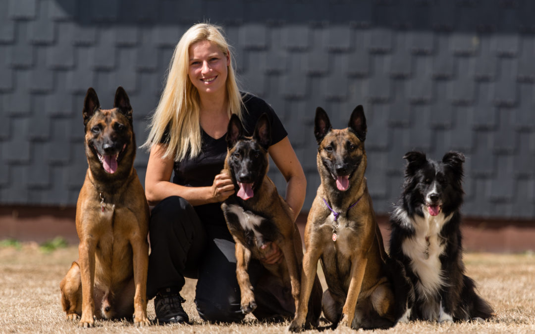 Natalie Knaack-Enkelmann | Studydogs