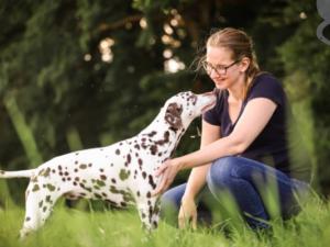 Entspannungssignal Hund aufbauen